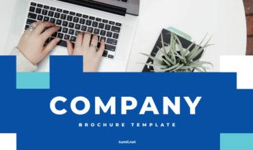Best Company Brochure Templates & Company Brochure Designs